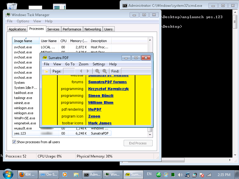 Non-exe process in Task Manager